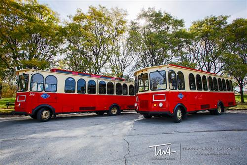 Aries Charter Trolleys