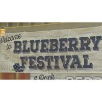 Lake George Blueberry Festival