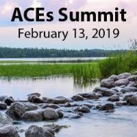 1st Annual ACES Summit