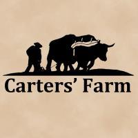 Carters Fall Festival