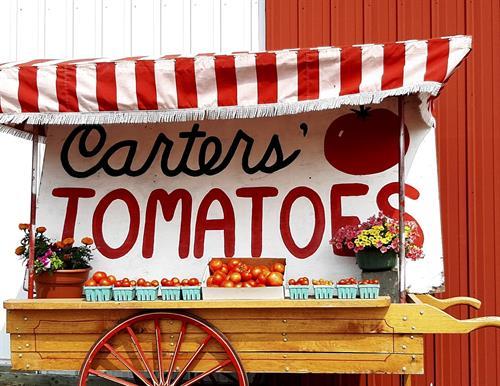 Gallery Image tomato_sales_cart.jpg
