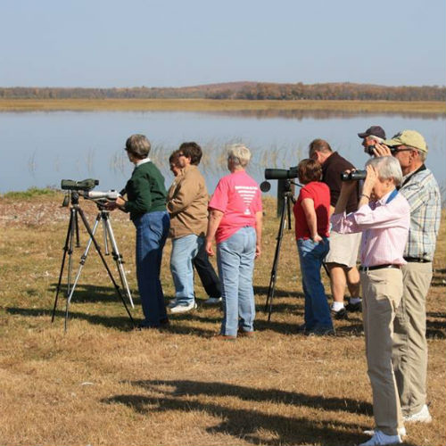 Tamarac provides excellent spring bird watching opportunities.