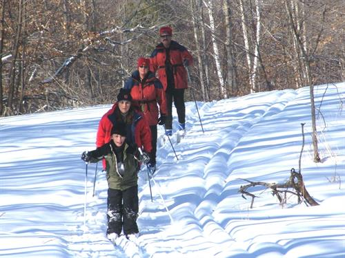 Tamarac Refuge offers 8 miles of back country cross-country ski trails and more than 20 miles of snowshoeing trails.