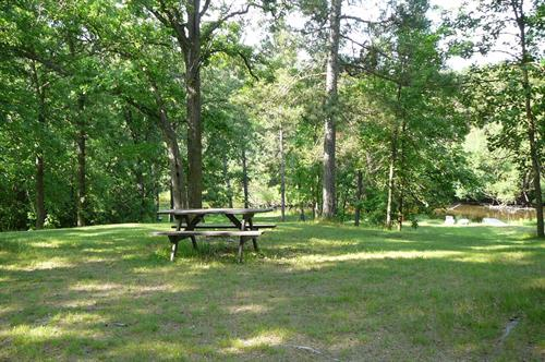 Big Pines Picnic Area