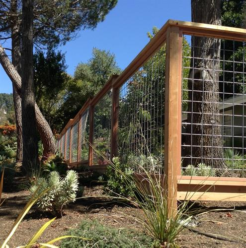 Hogwire Garden Fence