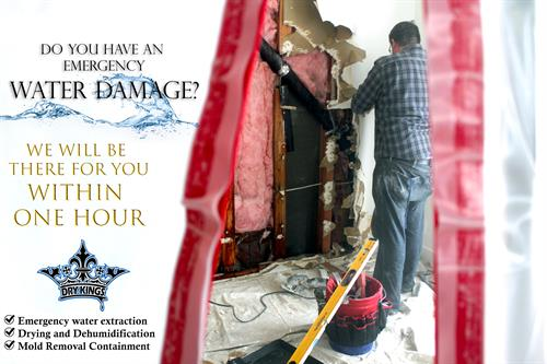 Water Damage Repair Marin County