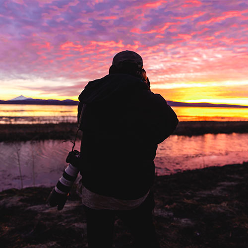Photographing birds and an awesome sunset at the Lower Klamath National Wildlife Refuge