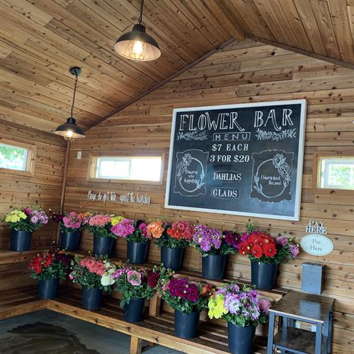Self Serve Cut Flower Stand, open mid-July through early October