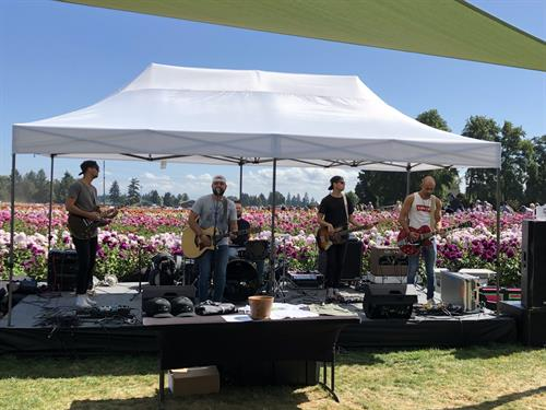 Live Music, during Annual Dahlia Festival