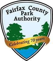 Virtual Dog Daze prsented by Fairfax County Park Authority