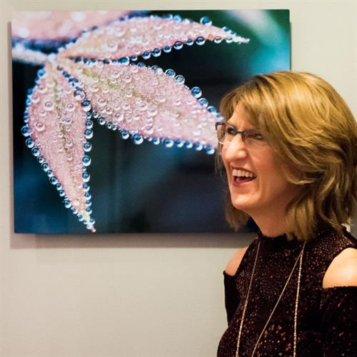 Art Show at Botanologica in Falls Church, October 2016