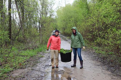 LHB Employees Help Clean Up Lilydale Park