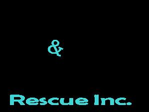 Tiny N Tall Rescue, Inc.