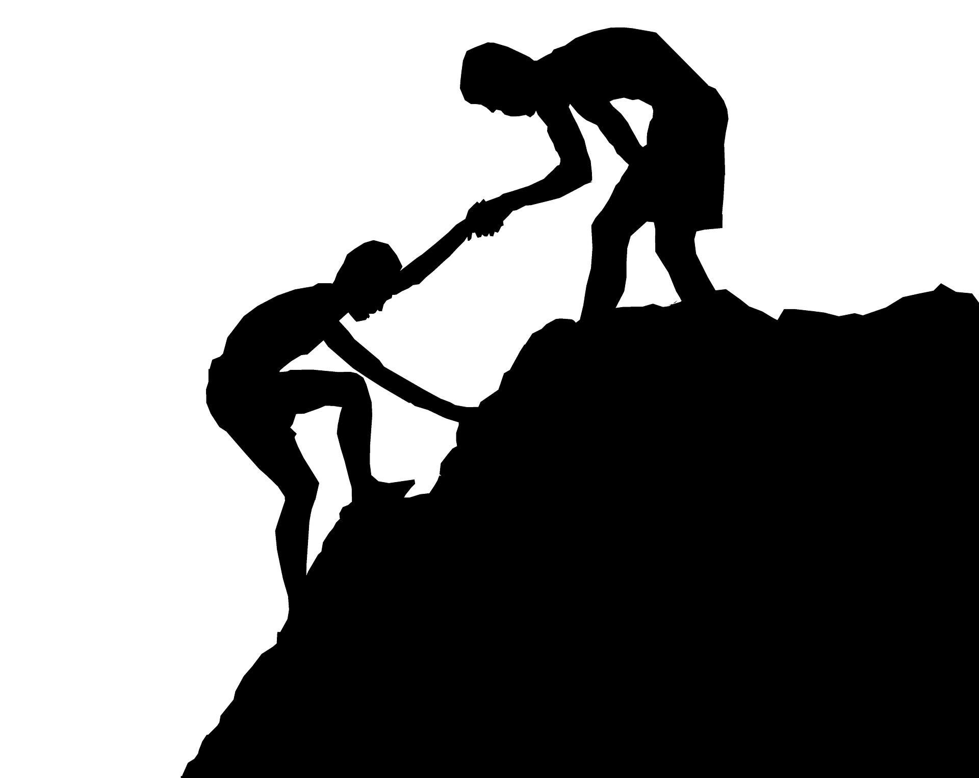 Image for Mentorship Insights