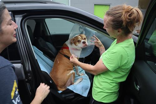 Our positive and supportive environment is a reflection of how we care for the wellbeing of pets and people, as well as each other. We are dedicated to making a difference in every community we serve, every day.
