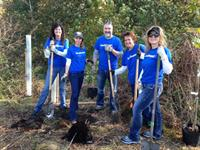 Volunteer with us in the Fall or Spring with our Heartland Tree Alliance program!