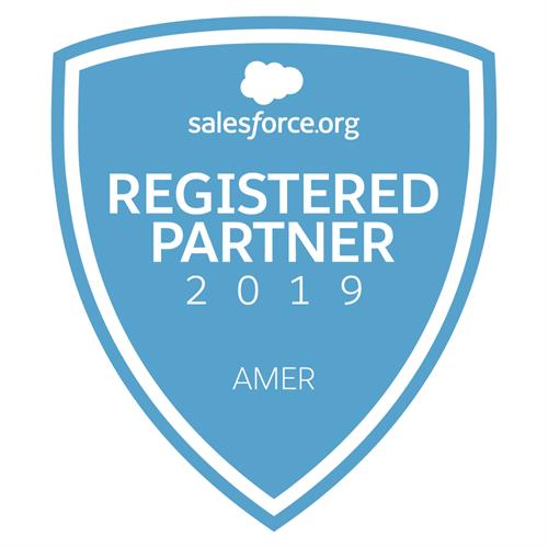 Gallery Image 2019_Registered_AMER_Partner_Badge.jpg