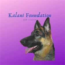 The Kalani Foundation