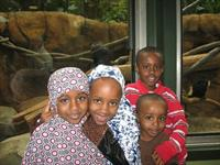 Refugee Day at the Zoo