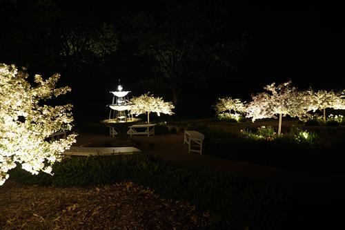 Low Voltage - Landscape Lighting - Commercial
