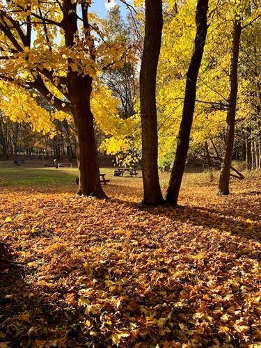 Gallery Image RusticTent6.JPG