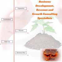 Firebird Business Consultng Ltd - Revenue and Business Growth Specialists