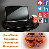 Firebird Business Consulting Ltd - Social Media Training and Social Media Management