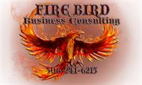 Firebird Business Consulting Ltd - Servicing Saskatoon, Warman, Regina and area