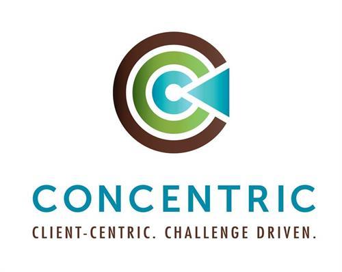 Client-centric. Challenge Driven.