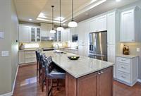 Gallery Image transitional_bradenton_kitchen_remodel.jpg