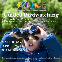 Guided  Birdwatching - Saturday  - April 2021
