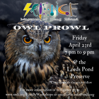 Owl Prowl - 2021 - April