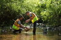 WSSI scientists conducting an aquatic habitat assessment necessary for the permitting process.