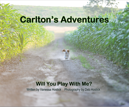 Carlton's Adventures Book Front Cover