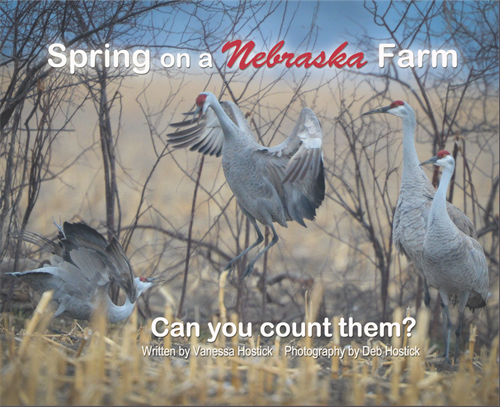 Spring on a Nebraska Farm Book Front Cover