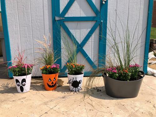 Fall make & take planters