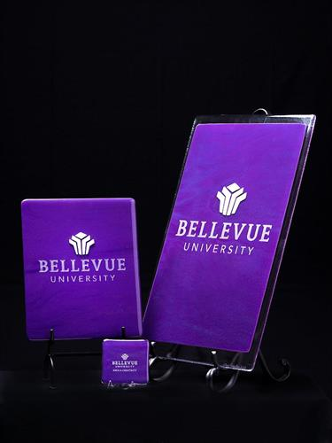 Commissioned Glass Art for President's office Bellevue University