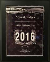 2016 Best of Minneapolis Animal Communicator Award