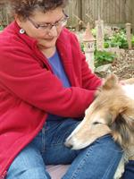 Rosie receiving Healing Touch for Animals®