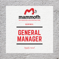 Mammoth Inc.