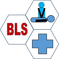 BLS/First-Aid Certification Course