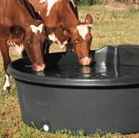 Gallery Image cow_poly_trough.jpg