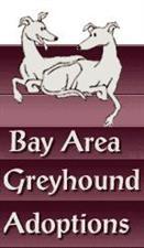 Bay Area Greyhound Adoptions, Inc.