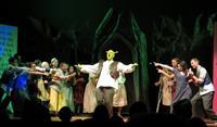 Gallery Image ShrekFCIS.jpg