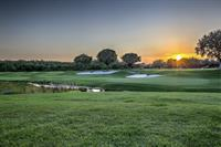 TPC Tampa Bay Golf Course Sunset View