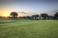 TPC Tampa Bay Clubhouse Golf Course View