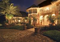 Gallery Image Outdoor-Palm-LED-Lighting.jpg