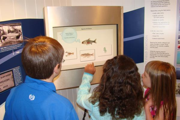 Interactive touchscreen exhibit