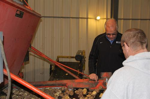 Alsum Farms Cutting Potato Seed -  pictured Larry Alsum, Farmer, CEO & President Alsum Farms & Produce
