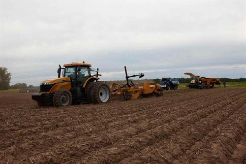 Alsum Farms in full swing harvesting WI Potatoes